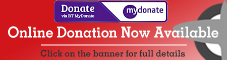 Online Donation Banner_red